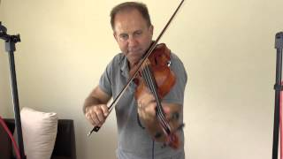 Realist 4 strings AE Violin for Ralph