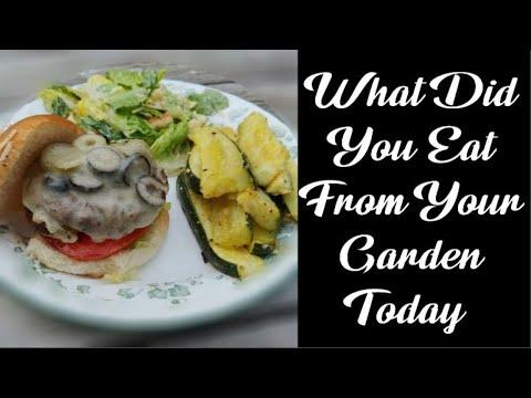 Hamburger Recipe   Michigan Olive Burger and Zucchini Fries