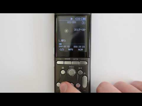 Playback of Your Recordings & Variable Speed Playback On Your DeciVibe