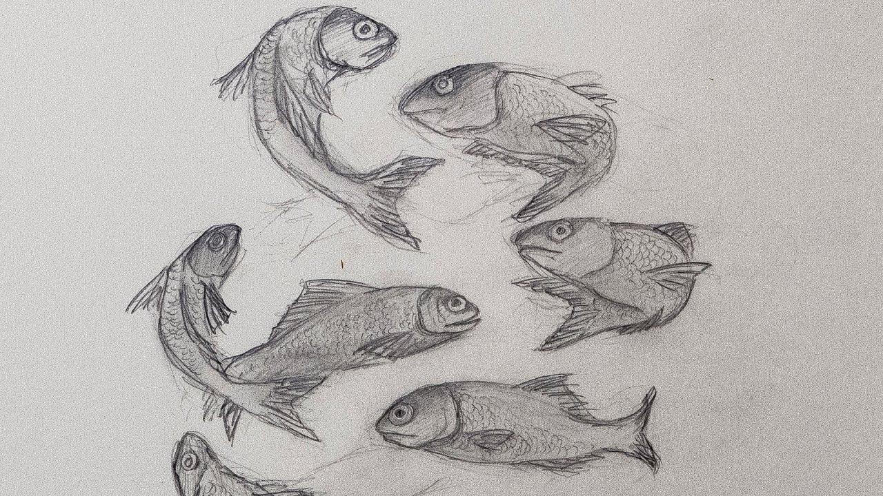 Koi 3d Wallpaper Zeichne Fische Youtube