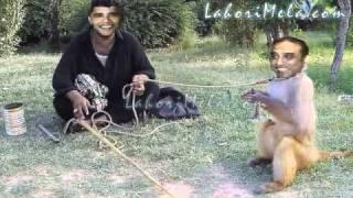 funny asif ali zardari pakistanis must watch