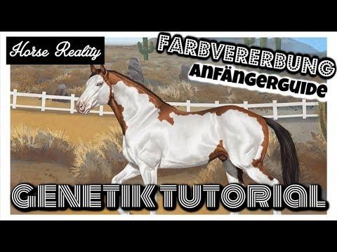 Horse Reality [HR]: FARBVERERBUNG 1:1 | Genetik Tutorial [DEUTSCH]