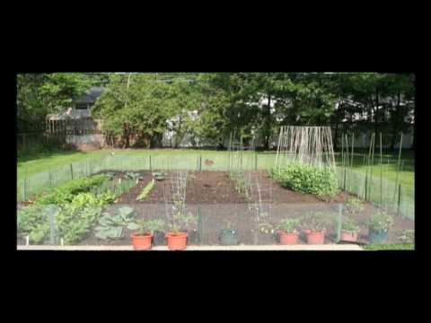Gardens of Babylon - Nashville