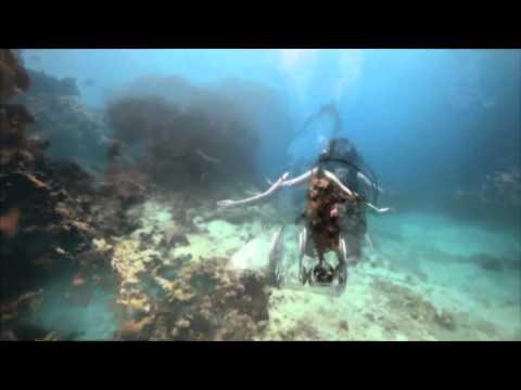 "cs + kreme - ""devotion"" OFFICIAL VIDEO by scott morrison"