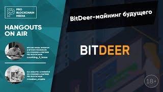 18+ BitDeer майнинг будущего