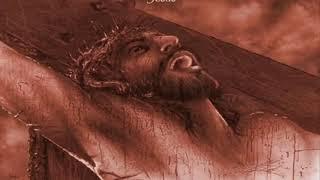 Ngày 14.09: Lễ Suy Tôn Thánh Giá Chúa
