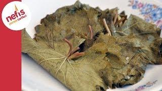 Yaprak Salamurası Tarifi - Nefis Yemek Tarifleri