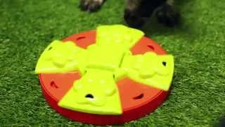 The Interactive Paw Feeder for Dogs from RSPCA World for Pets