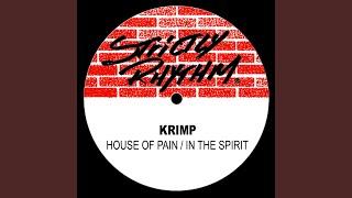 In The Spirit (In The Spirit Mix)