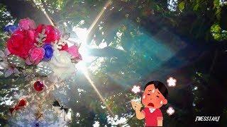 花組】公演『MESSIAH』炎暑のムラはセミの大合唱💎宝塚歌劇2018.7.22