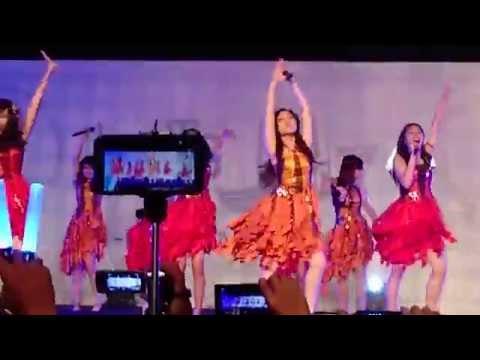 1. HS Fest GC (Gingham Check) & (Kilat yang Indah / Utsukushii Inazuma)