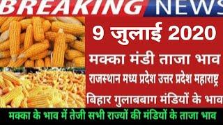 9 जुलाई 2020 मक्का मंडी ताजा भाव,मक्का भाव में भारी तेजी,maize bhav today, makka bhav, mandi bhav