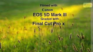 test technicolor cinestyle picture style canon 5d mark iii graded in final cut pro x