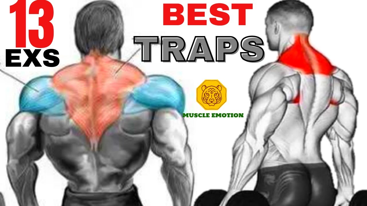 TRAP WORKOUT -MASSIVE / 13 best exercices for bigger traps