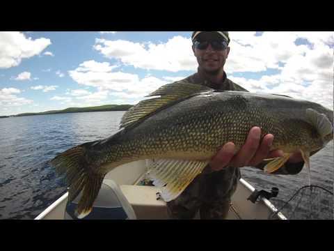 Walleye Fishing at O'Sullivan Lake Lodge