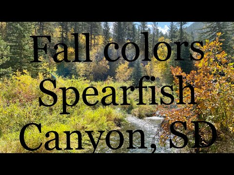 Fall Colors & Waterfalls Visit Spearfish Canyon In South Dakota By NoBSadventures