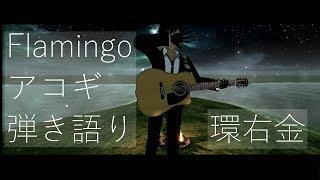 【Vtuber】Flamingoアコギ弾き語り【環右金】