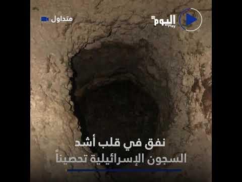 هروب 6 فلسطينيين محكومين بالسجن المؤبد من سجن جلبوع رغم الإجراءات الأمنية المشددة