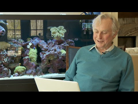 Love Letters to Richard Dawkins