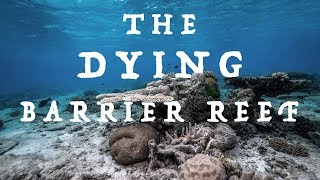 The DYING Barrier Reef