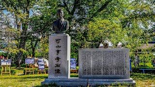 봉평 메밀꽃 축제