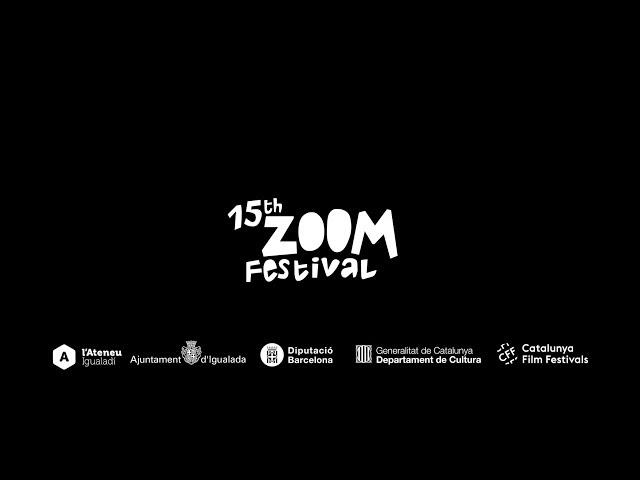 ReZoom 2017