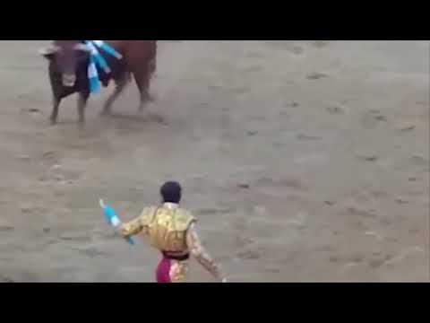 Sickening moment a one-eyed matador is SCALPED by a bull after getting gored