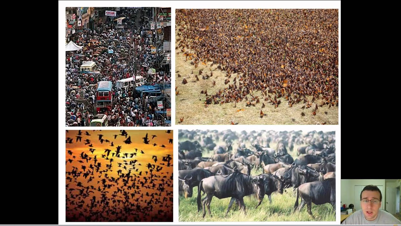 Introduction to Population Ecology | Radcliffe's IPM World Textbook