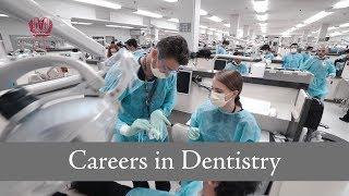 Careers in Dentistry Summer Program