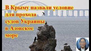 В Крыму назвали условие для прохода судов Украины в Азовское море