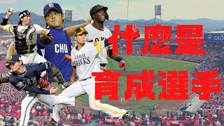 【日本職棒 -- 你知道嗎】這些年一直聽到的育成選手是怎麼培養出來的呢|陳偉殷竟然也當過育成選手!?