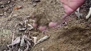 भूमि स्वास्थ्य सुधारSoil Health in 6 months with waste decomposer