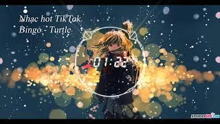 Download Mp3 Bingo  Turtle  - Nhạc Hot Tik Tok 2018