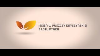 Jesień w Puszczy Knyszyńskiej z lotu ptaka