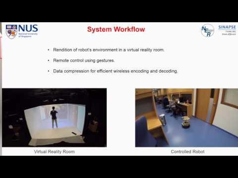 NER group tele-robotics platform