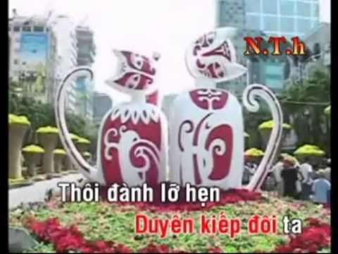 Karaoke TD Cai luong -Tâm sự loài chim biển _Phần 4 (Anh Chin)