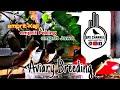 Emprit Kaji Jowo Peking  Mp3 - Mp4 Download