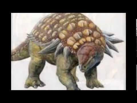 My Tribute to Ankylosaurs & Stegosaurs