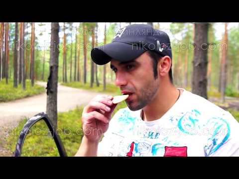 РАБОТА ЗА ГРАНИЦЕЙ. Финляндия. Один день из жизни сборщика ягоды