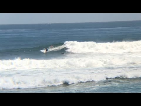 Surfing - King Swell Mondo Surf 7/4/2020 4th Of July