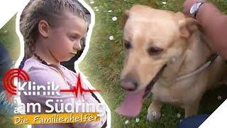 Mia wird ihr Hund weggenommen! Wieso hasst Mama ihn?   Die Familienhelfer   SAT.1