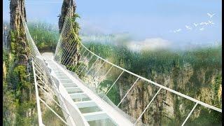 مصر العربية | كيف تسير بين السحاب.. أعلي جسر زجاجي في العالم