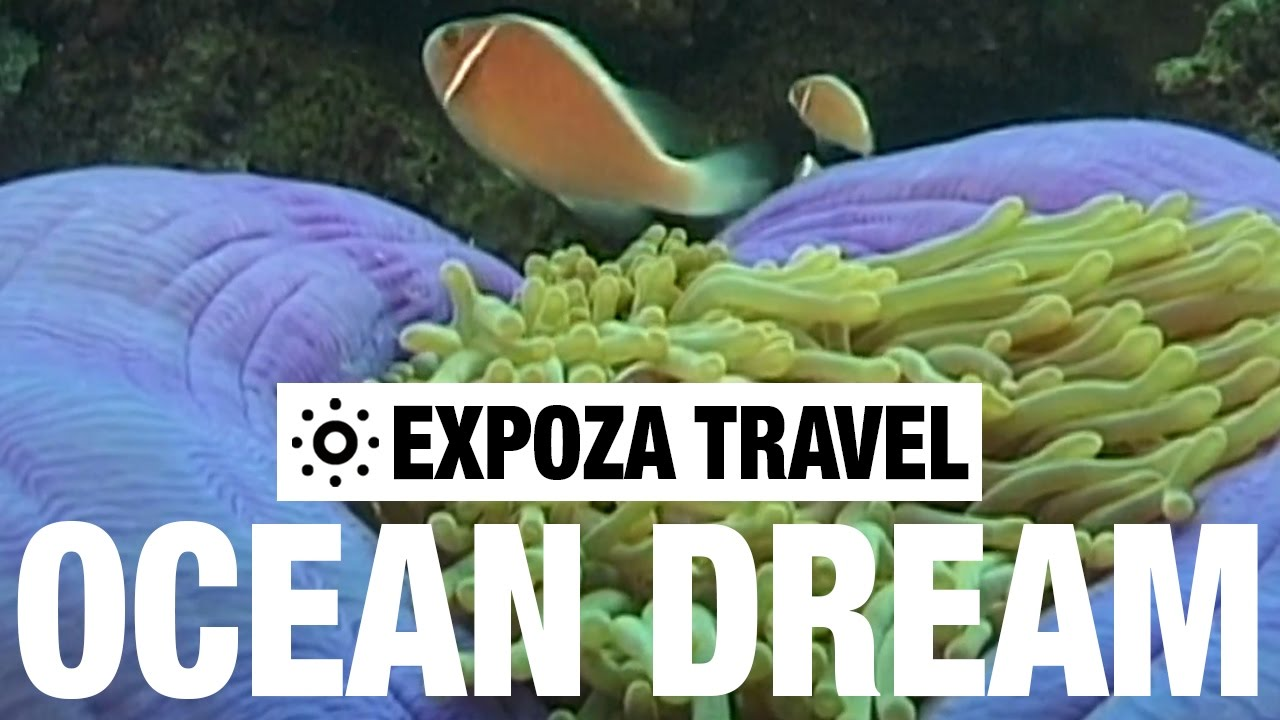 Ocean Dream Vacation Travel Video Guide