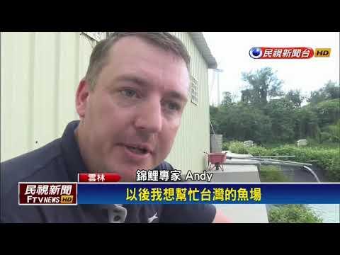 英國人賣房來台灣定居 養殖錦鯉圓夢-民視新聞