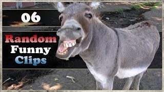 Random Funny Clips - Ep.06 - I Should Rap!