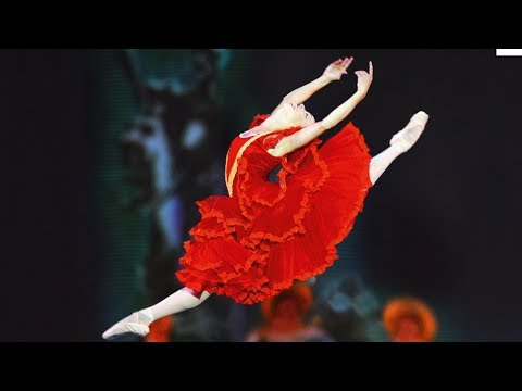 Don Quixote | National Ballet of Cuba | Grand Palais 2007 (DVD trailer)