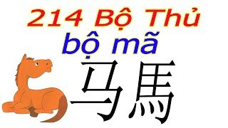 Ý NGHĨA 214 BỘ THỦ - 187 BỘ MÃ 马 , 馬