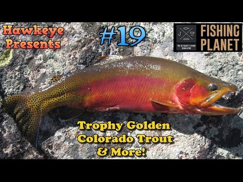 Fishing Planet S2 - Ep. #19: Trophy Golden Colorado Trout and More!