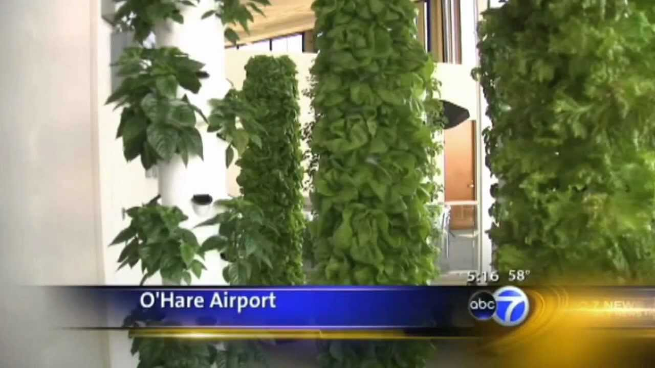 Future Growing Tower Garden Farm At O Hare International Airport
