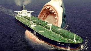 Top 5 Megalodons Caught on Camera & Spotted In Real Life!